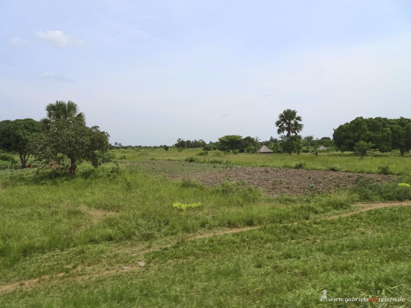 landscape in Uganda
