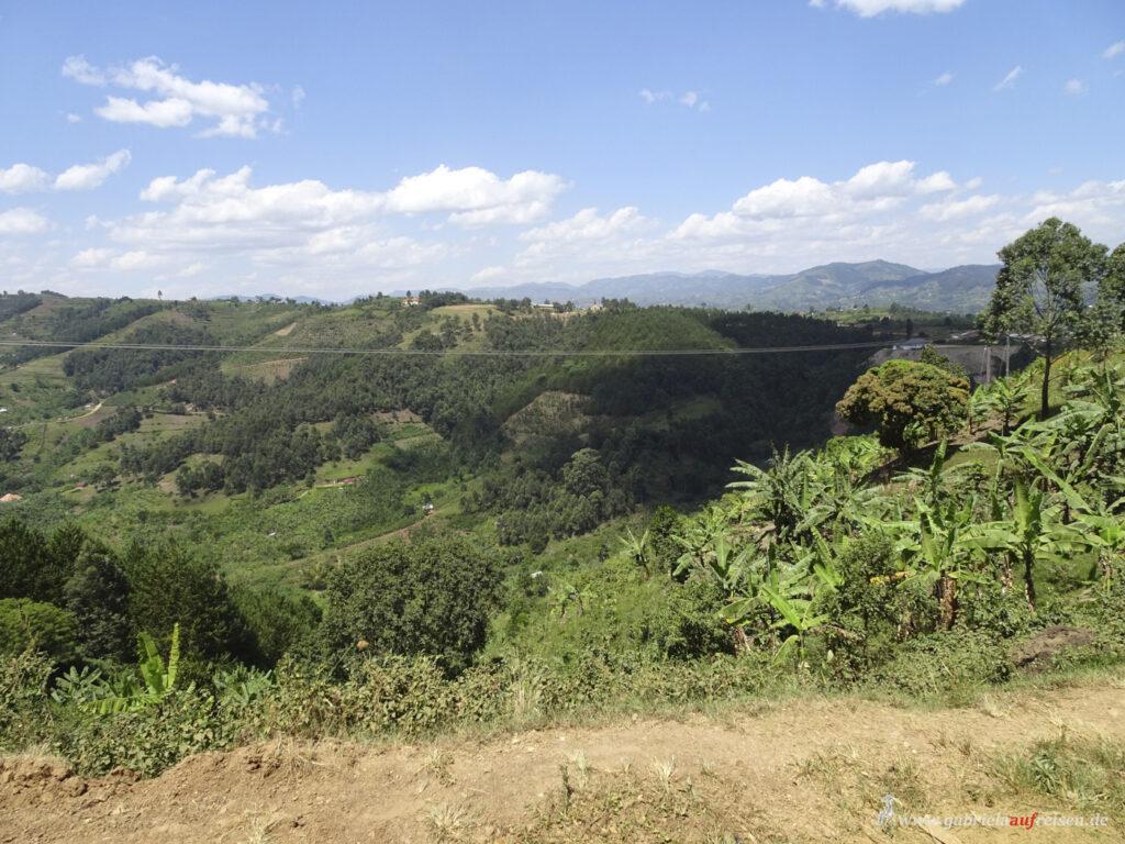 Rwenzori-Mountain-Range